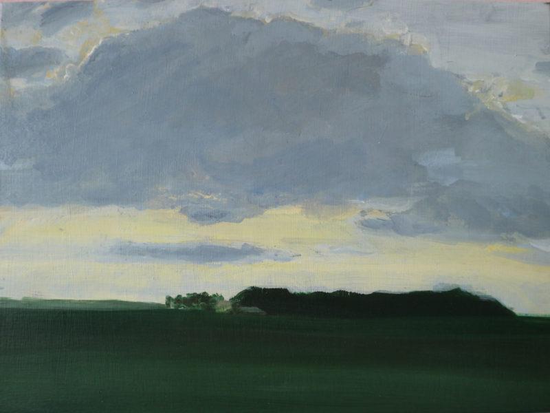 Boijl landschap, 29,7 X 39,7 cm, acryl op paneel, 2018