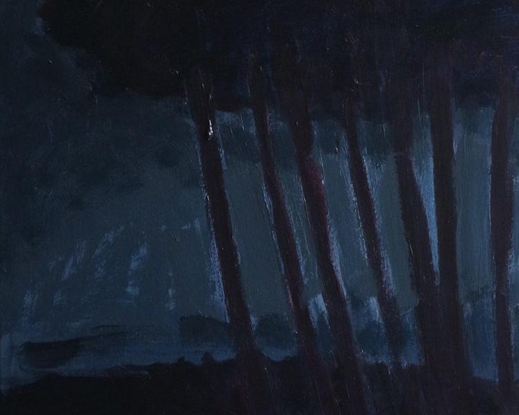 NOCTURNES 5, 30×48, Acryl op paneel, 2019